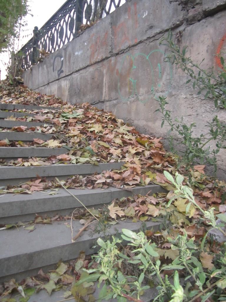 Последние дни осени в Симферополе