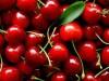 На Кубани раздавили тонну вишни, которую везли в Крым