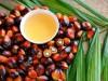 Крым попробует обойтись без пальмового масла