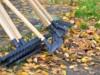 Власти Коктебеля из-за безденежья просят граждан помочь с уборкой