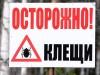 Уже 3 тысячи крымчан пострадали от клещей
