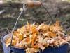 Симферополь будет воевать с опавшей листвой