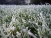 С сегодня в Крыму начинаются заморозки