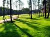 В Крыму создали особые архитектурные и парковые зоны