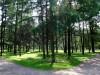 В кошельке Москвы нашли деньги на парк в Севастополе