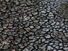 В Крыму пересыхают реки
