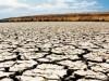 Крым ждет еще большая засуха в будущем