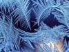В Крым возвращаются морозы
