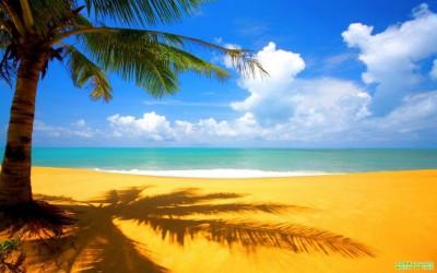 В Крыму хотят привести пляжи под один стандарт