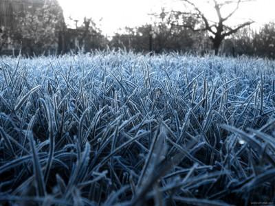 В Крым могут вернуться заморозки
