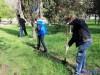 В Севастополе регионалы ради субботника сняли детей со школьных занятий(фото+видео)