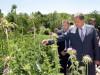 Премьер Крыма погулял в цветах и рассказал о строительстве нового завода