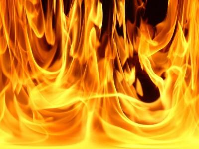 В Крыму пожар чуть не уничтожил целое стадо