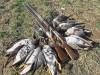В Севастополе собираются запретить охоту