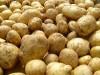 Азаров обвинил СМИ в создании ажиотажа цен на картошку