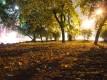 Вечерняя осень