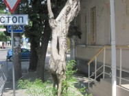 Деревянные скульптуры Симферополя